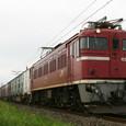 ED75‐1004