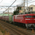 EF81‐88