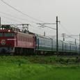 EF81 150